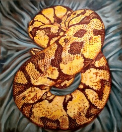 sexy coiled snake, silky, acrylic on canvas, 51 x 47 inches